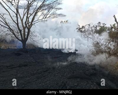 Lava and poisonous sulfur dioxide plumes rise from fissures along the eastern rift caused by the eruption of the Kilauea volcano May 16, 2018 in Pahoa, Hawaii. The recent eruption continues destroying homes, forcing evacuations and spewing lava and poison gas on the Big Island of Hawaii. - Stock Image