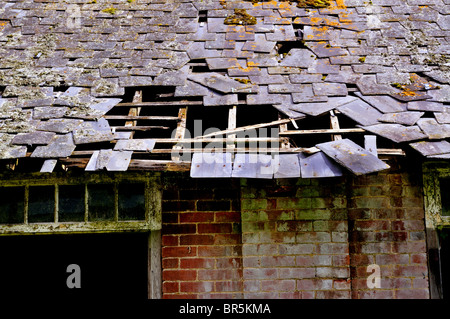 Derelict roof on old barn - Stock Image