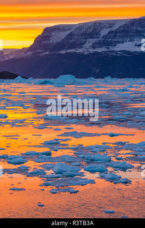 Greenland. Scoresby Sund. Gasefjord. Sunset with icebergs and brash ice. - Stock Image