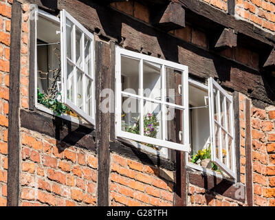 Three windows, flowers on the shelf, open, historical downtown, Wismar, Germany - Stock Image