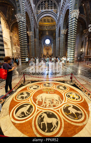 The marble floor mosaics, in the interior of Siena Cathedral ( Duomo Siena ), Siena, Tuscany Italy Europe - Stock Image