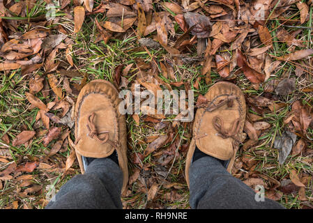 Standing in the fallen Autumn leaves. - Stock Image