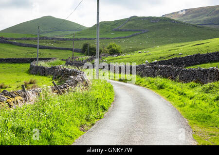 Country lane in Yorkshire Dales, National Park - Stock Image