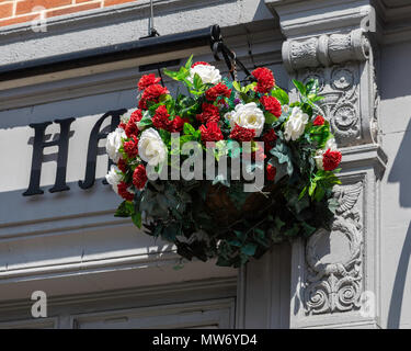 A hanging basket of flowers including white roses mounted on a wall in Warrington Cheshire May 2018 - Stock Image
