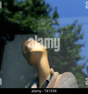 Mannequin in a shop window and reflection of a tree - Stock Image