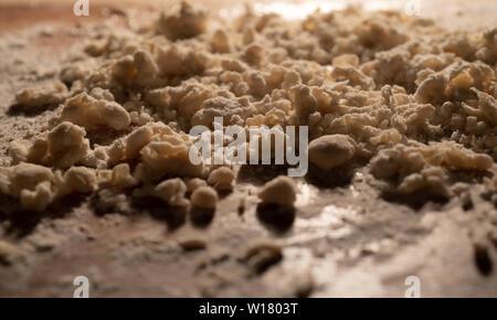 Italy lazio Frascatelli Pasta - Stock Image