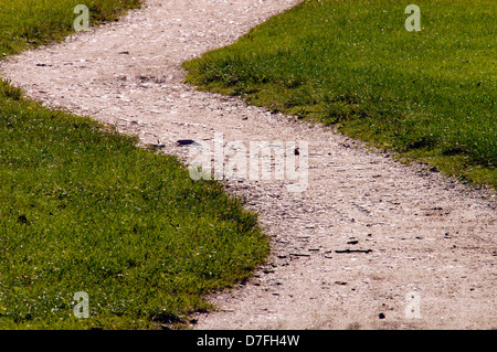 A way in the Green - Stock Image