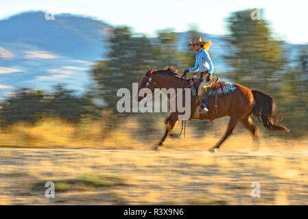 USA, California, Parkfield, V6 Ranch blond cowgirl on a running horse (MR) - Stock Image