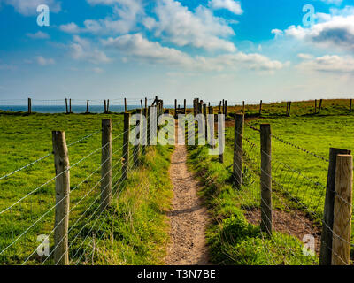 A foot path between stock fences from the Cleveland Way towards the sea between Marske and Saltburn on the North Yorkshire Coast - Stock Image