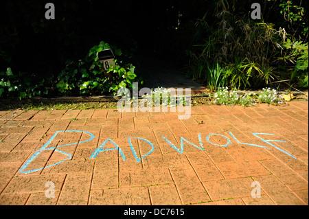 'Bad Wolf' graffiti on footpath, Perth, Western Australia, on 'Bad Wolf Day', June 3rd 2013 - Stock Image