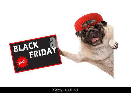 frolic pug puppy dog with red cap, holding up sale sign with text Black Friday, hanging sideways from white banner, isolated - Stock Image