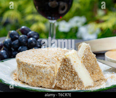 French cheeses collection, piece of fermented cow milk cheese Camembert au Calvados served with glass of sweet red port wine in green garden close up - Stock Image