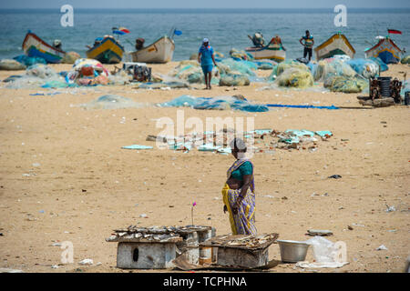 Poverty in Chennai, India, where a lady prepares fish caught from the Bay of Bengal on Marina Beach - Stock Image