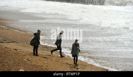 Brighton, East Sussex, UK. 3rd March 2019 .These visitors from London and Bristol were determined to enjoy a walk on Brighton seafront today despite the high winds as Storm Freya arrived and started to batter parts of Britain today Credit: Simon Dack/Alamy Live News - Stock Image