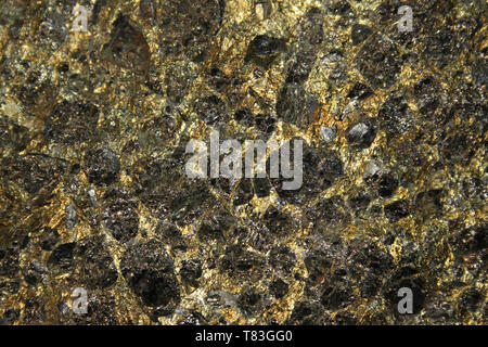 Chalcopyrite a copper iron sulfide mineral and Pyrite Crystals - Stock Image
