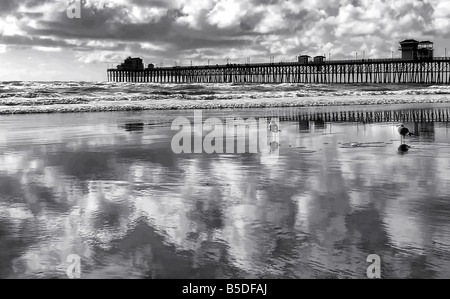 USA. Oceanside beach at low tide. The clouds are reflecting in the sand at low tide. - Stock Image