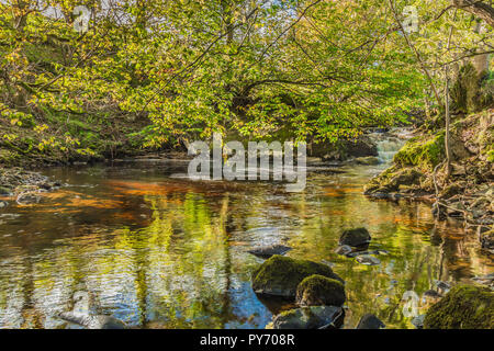 A tranquil pool and cascade with autumn colours and reflections in the stream - Stock Image
