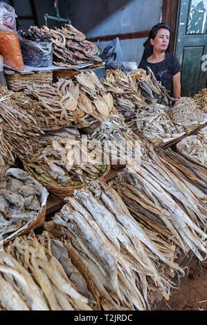 Woman vendor selling dried fish in Kalaw Myanmar (Burma) - Stock Image