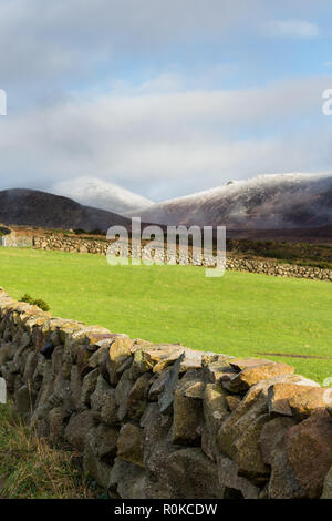 Slieve Donard and Chimney Rock Mountain covered in light snow seen in the distance beyond green field and dry stone wall. Mourne Mountains, N.Ireland. - Stock Image