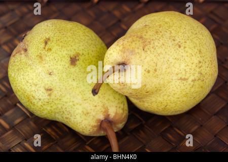 Studio shot of two Bartlett pears - Stock Image