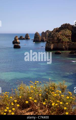 Portugal, Lagos, Praia da Dona Ana, Flowers & Coastline - Stock Image