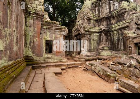Ta Prohm Temple, Angkor, Cambodia - Stock Image