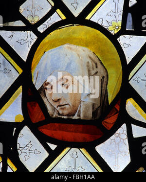 16th or 17th century stained glass fragment depicting Virgin Mary or St Anne, St Michael's Church, Irstead, - Stock Image