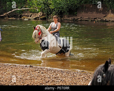 female traveller riding horse out of the water after washing it in the River Eden, Appleby-in Westmorland at the crowded annual Appleby Horsefair, Cumbria, England UK, 8 June, 2018. female rider swimming horse in River Eden Credit: Steve Holroyd/Alamy Live News - Stock Image