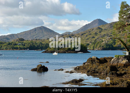 View of Gowlbeg and Sugarloaf at Shore of the Bamboo Park Glengarrif - Stock Image