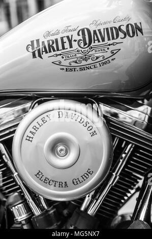 Twin Cam Harley Davidson motorbike - Stock Image