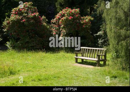 Bench in Garden, Wiltshire, UK. - Stock Image