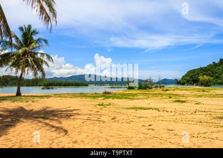 Palm trees on Nai Yang beach, Phuket, Thailand - Stock Image