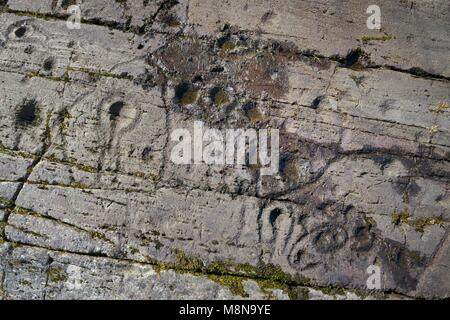 Cup and ring mark marks prehistoric Neolithic rock art on natural rock outcrop at Kilmichael Glassary in Kilmartin - Stock Image