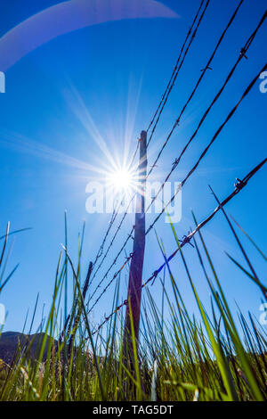Close-up of barbed wire fence & wooden fence posts against clear blue sky; ranch in Central Colorado; USA - Stock Image