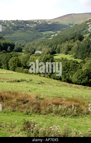 Dee Valley Llangollen North Wales UK - Stock Image