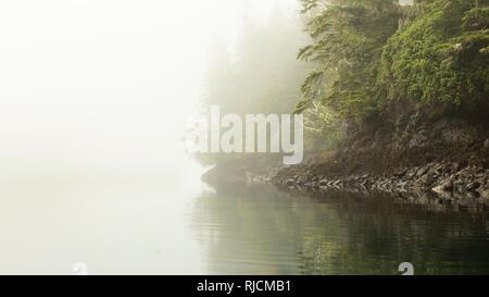 Kanada, British Columbia, Johnstone Strait, Küste im dichten Nebel - Stock Image