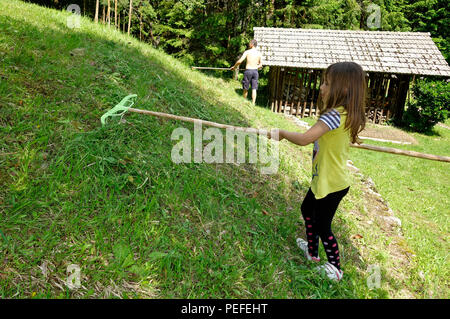 Young girl with hay rake helps with work in home backyards lawn. - Stock Image