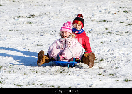 Chippenham, Wiltshire, UK. 2nd February, 2019. Children enjoying the snow before it thaws are pictured in a local park in Chippenham as they slide down a hill on a sledge. Credit: Lynchpics/Alamy Live News - Stock Image