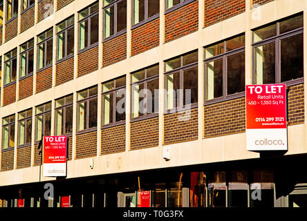 Sheffield, Retail Offices to Let, England - Stock Image