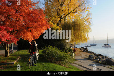 Switzerland: Autum colors at Lake Zürich in Seefeld - Stock Image