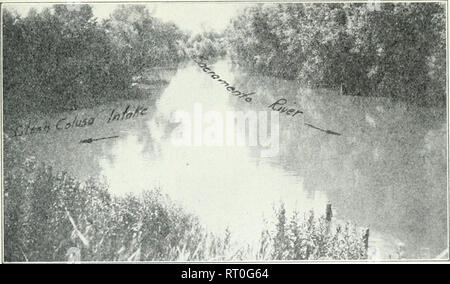 . California fish and game. Fisheries -- California; Game and game-birds -- California; Fishes -- California; Animal Population Groups; Pêches; Gibier; Poissons. CALIFORNIA FISH AND GAME 45 NETTING OPERATIONS ON AN IRRIGATION CANAL By J. B. Phillips INTRODUCTION Tlie Division of Fish and Game of California conducted a series of seining tests on tlie Sacramento River belov^^ the pumps of the Glenn Colusa Irrigation District/ during the spring and summer of 1929. These seining tests were for the purpose of ascertaining if food and game fish were going through the pumps into the irrigating canal. - Stock Image