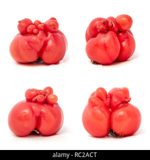 Collage of some unusually shaped tomatos on a white background - Stock Image