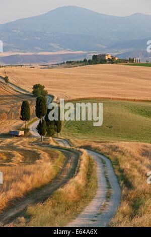 Val d'Orcia, nr Pienza, Tuscany, Italy - Stock Image