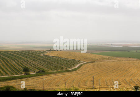 The fertile Valley of Jezreel taken from the historic Tel Megiddo in Lower Galilee Israel. This site of many ancient battles will be the site of the p - Stock Image