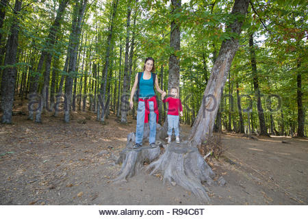 mother woman and four years age blonde child standing on cut tree trunk posing smiling in forest of chestnut in autumn - Stock Image