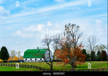 Horse Barn and Landscape from the Bluegrass Region of Kentucky - Stock Image