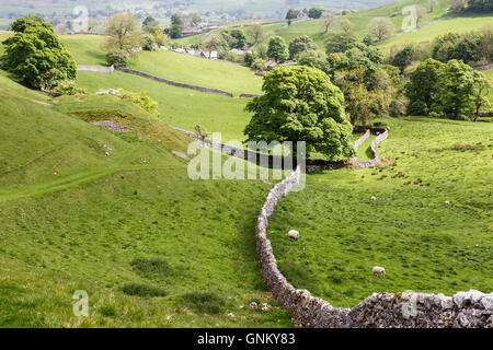 Looking towards the village of Thorpe in the Yorkshire Dales - Stock Image