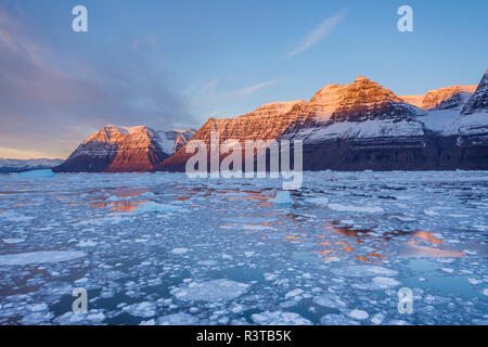 Greenland, Scoresby Sund, Gasefjord. Ice-filled fjord and mountains at sunset. - Stock Image
