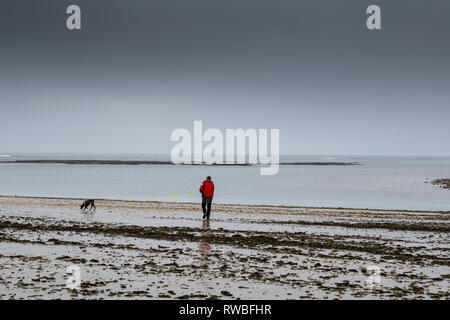 France, 2018, A Man walks a dog on a beach during bad weather. - Stock Image