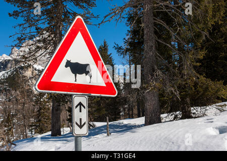 Picture of a Cow traffic european sign (red triangle) with mountains on background . Beware of the cow. A warning sign with cattle on european road sy - Stock Image